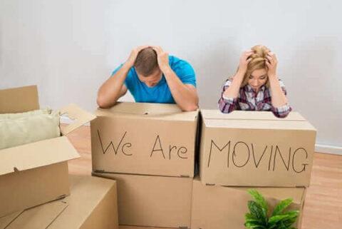 Moving company in Roysambu
